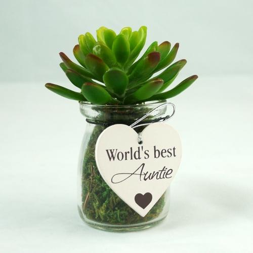 KB6050 - Best Auntie Succulent in milk bottle